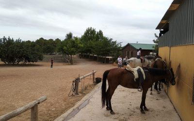 horse-riding-ekkorelax