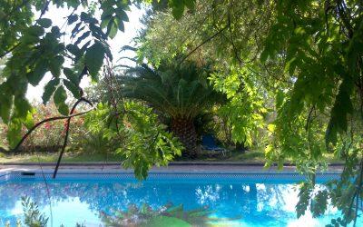 yoga-spain-pool